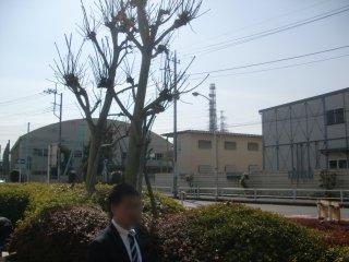 リニア新幹線駅が計画されている相原高校です。