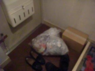 金魚の土棺は猛暑の悪臭発生を嫌い廃棄処分に。