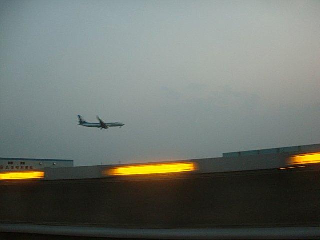 ANAのB787とおぼしき機体です。