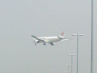 JALのB777です。