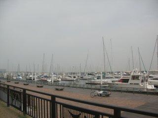ヨットハーバーに行きました。
