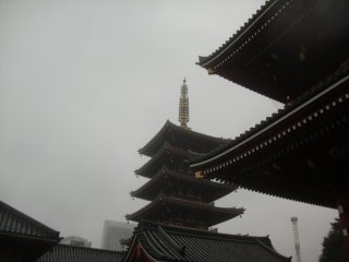 落語「鷺取り」の関西版の舞台は四天王寺、関東版は浅草寺のそれぞれ五重塔。