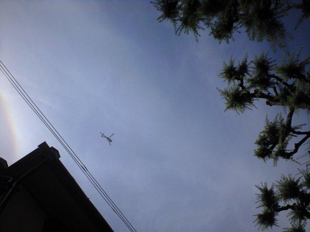 近所で大きな交通事故があったらしく、取材ヘリが飛び回っています。