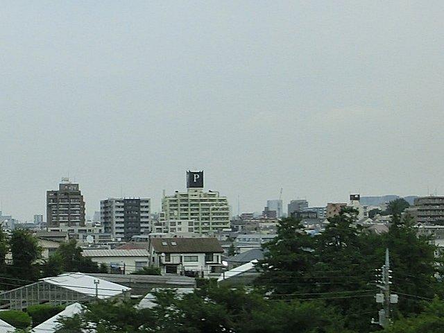 何よりも東京に来た事を実感するのは、このPビル。