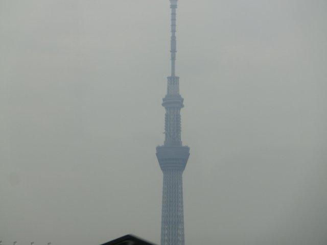 東京スカイツリー(望遠で撮影、錦糸町付近)。