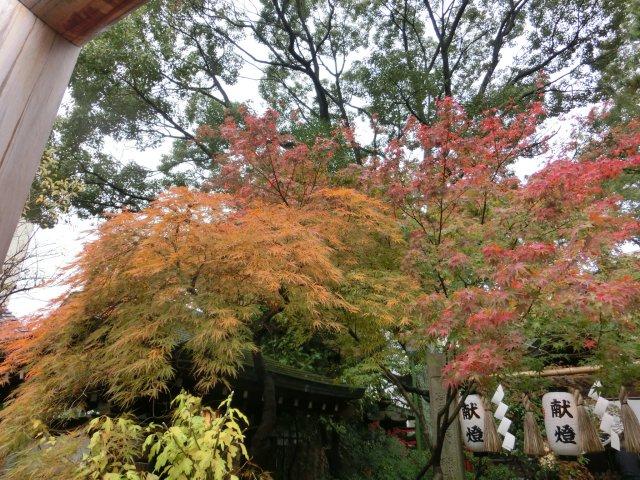 堀越神社にも参りました