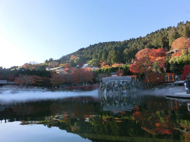 池には湯気スモークが立ち、幻想的な光景でした。