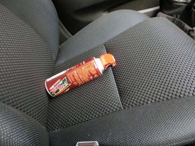 車内の蚊を駆除しました。