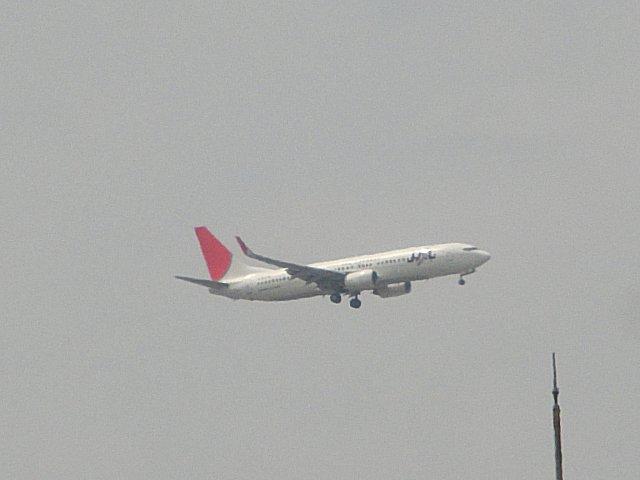 JALのB737-800です。