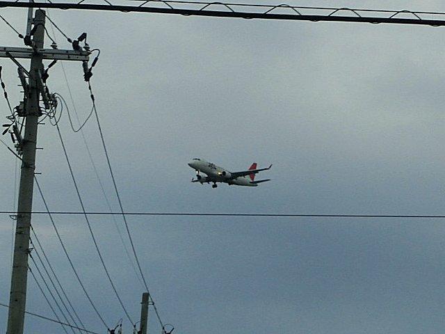 JALのEMB170です。