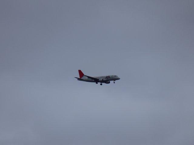JAL・エンブラエル170です。