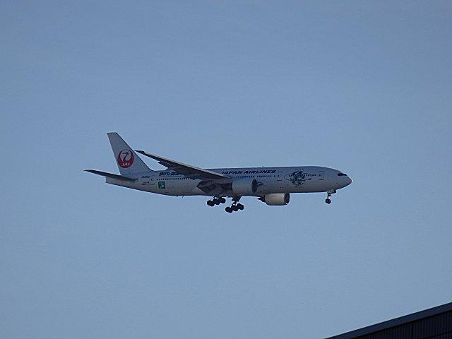 JAL・B777・「空のエコ」マークつきです。