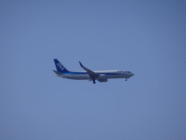 スカイクリアーの中を飛翔するANAのB737−800です。