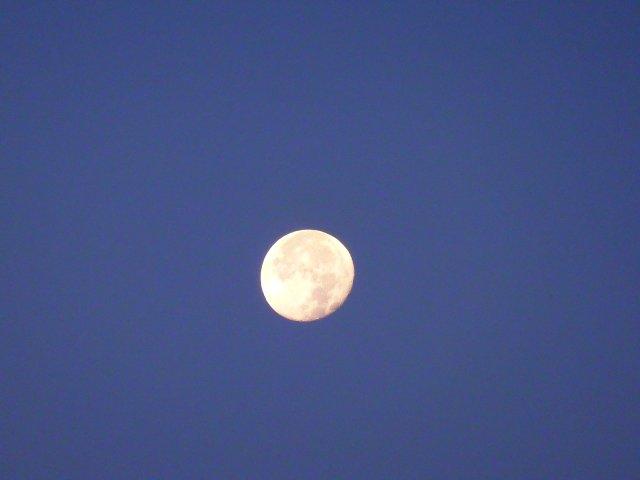 西の空のほぼ満月です。