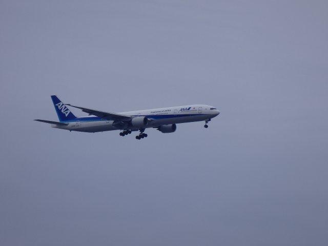 ANA/B777-300です。