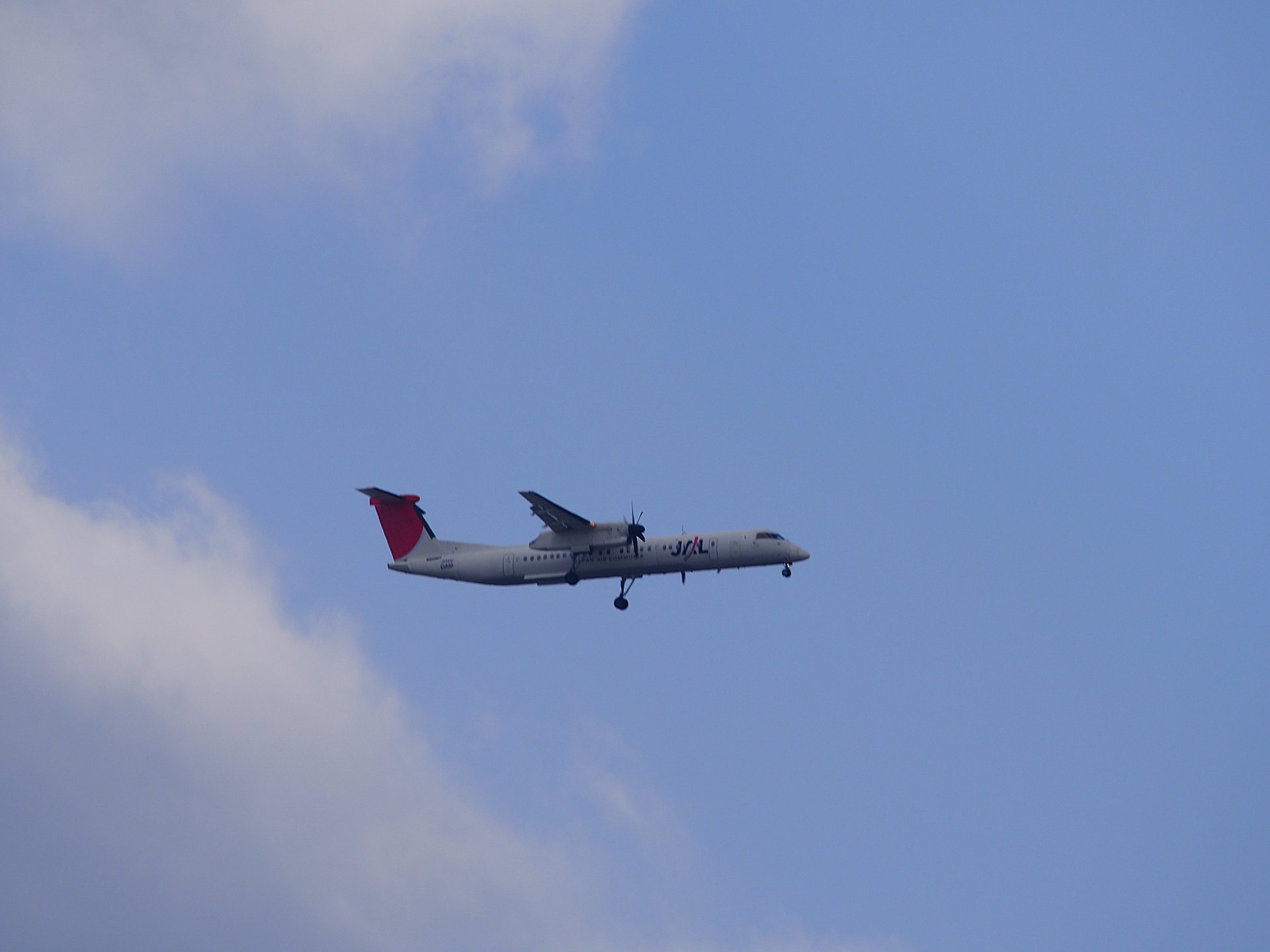 JALのボンバル機です。