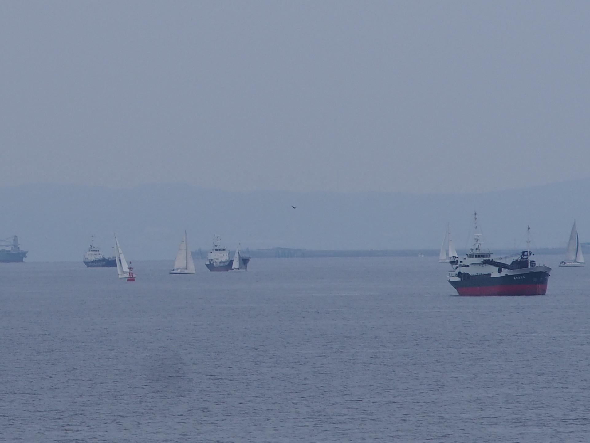 たくさんのヨットの回遊です。