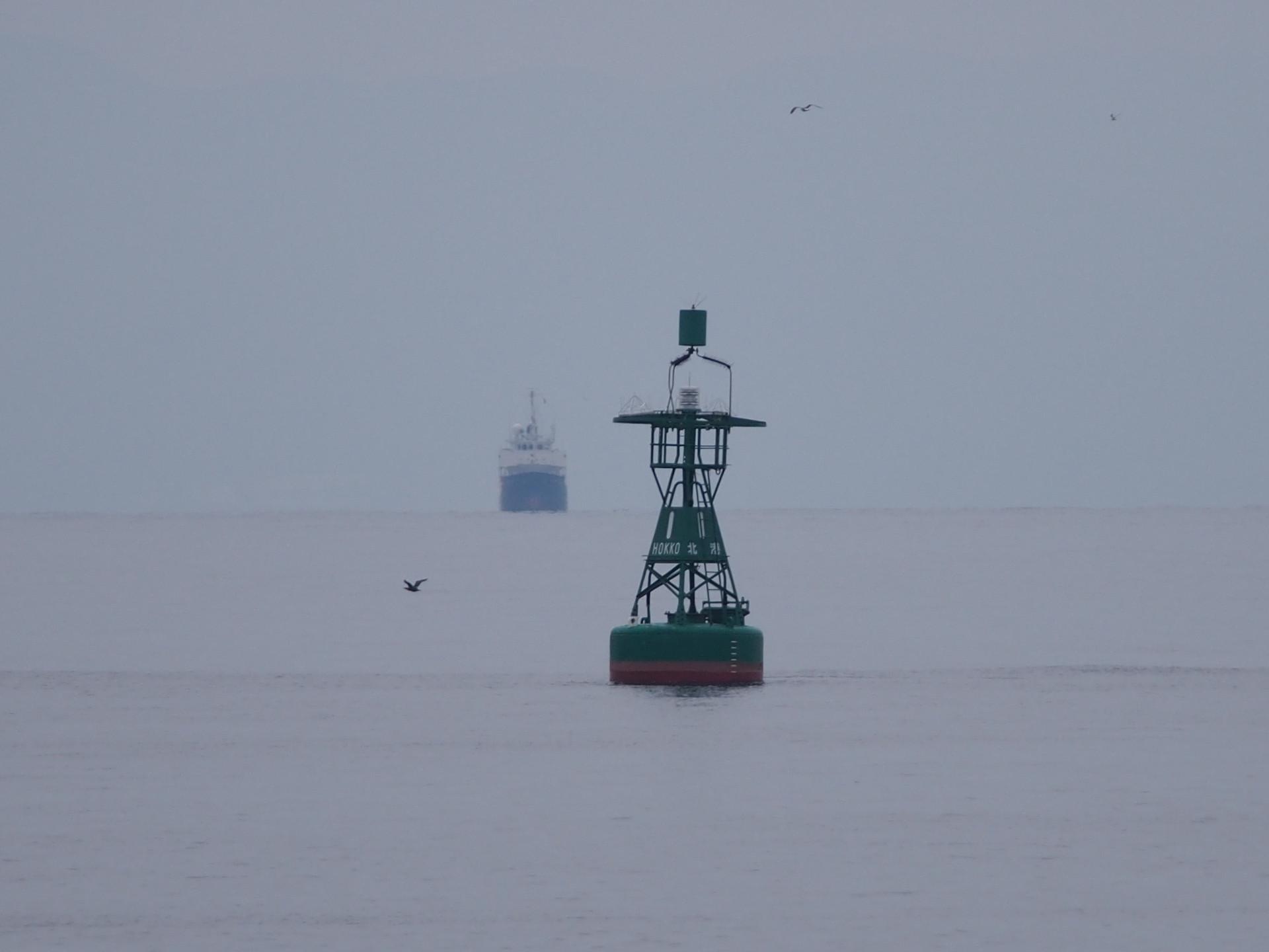 ブイの背後には大型貨物船です。