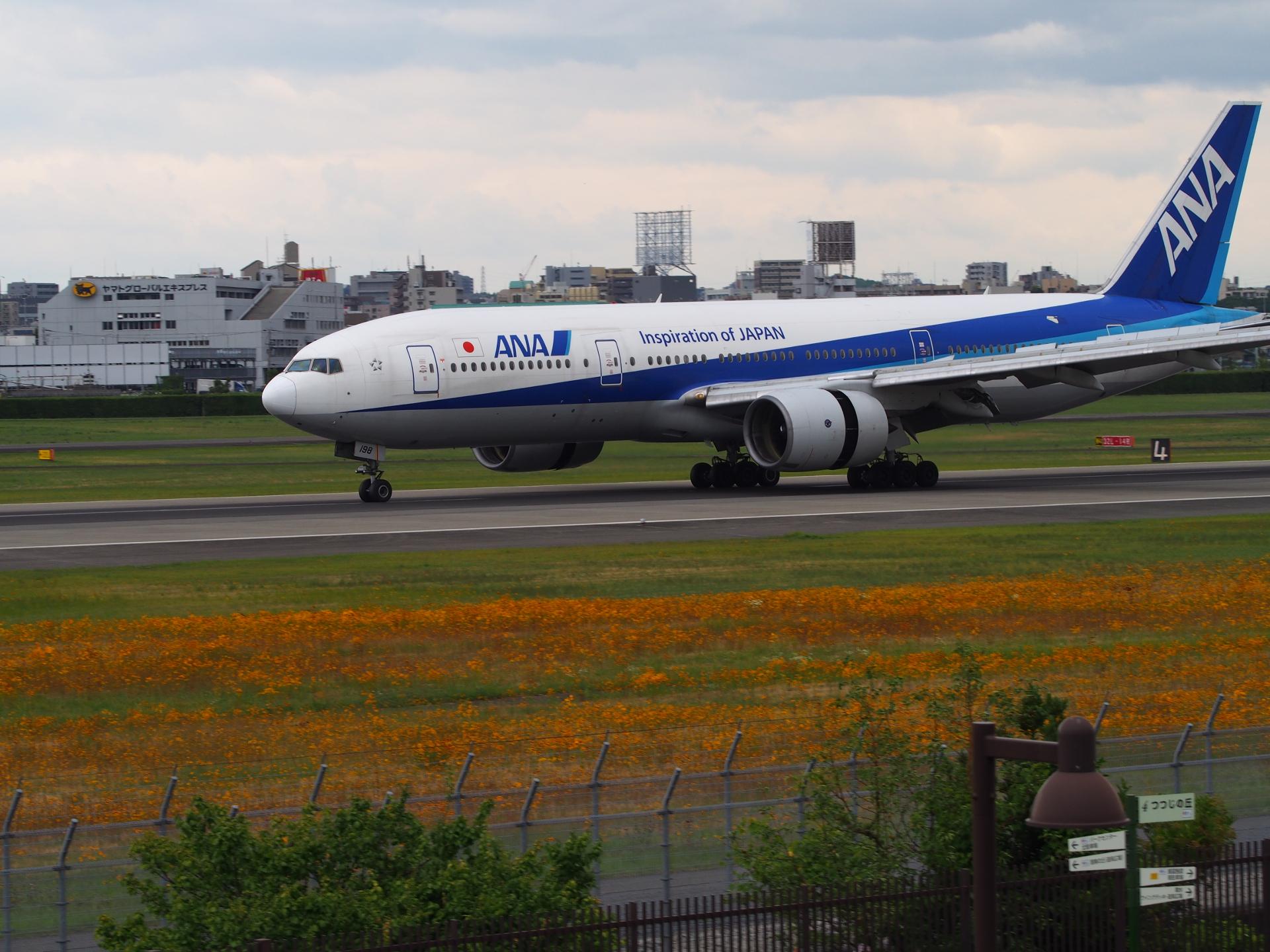 東京からの便です。