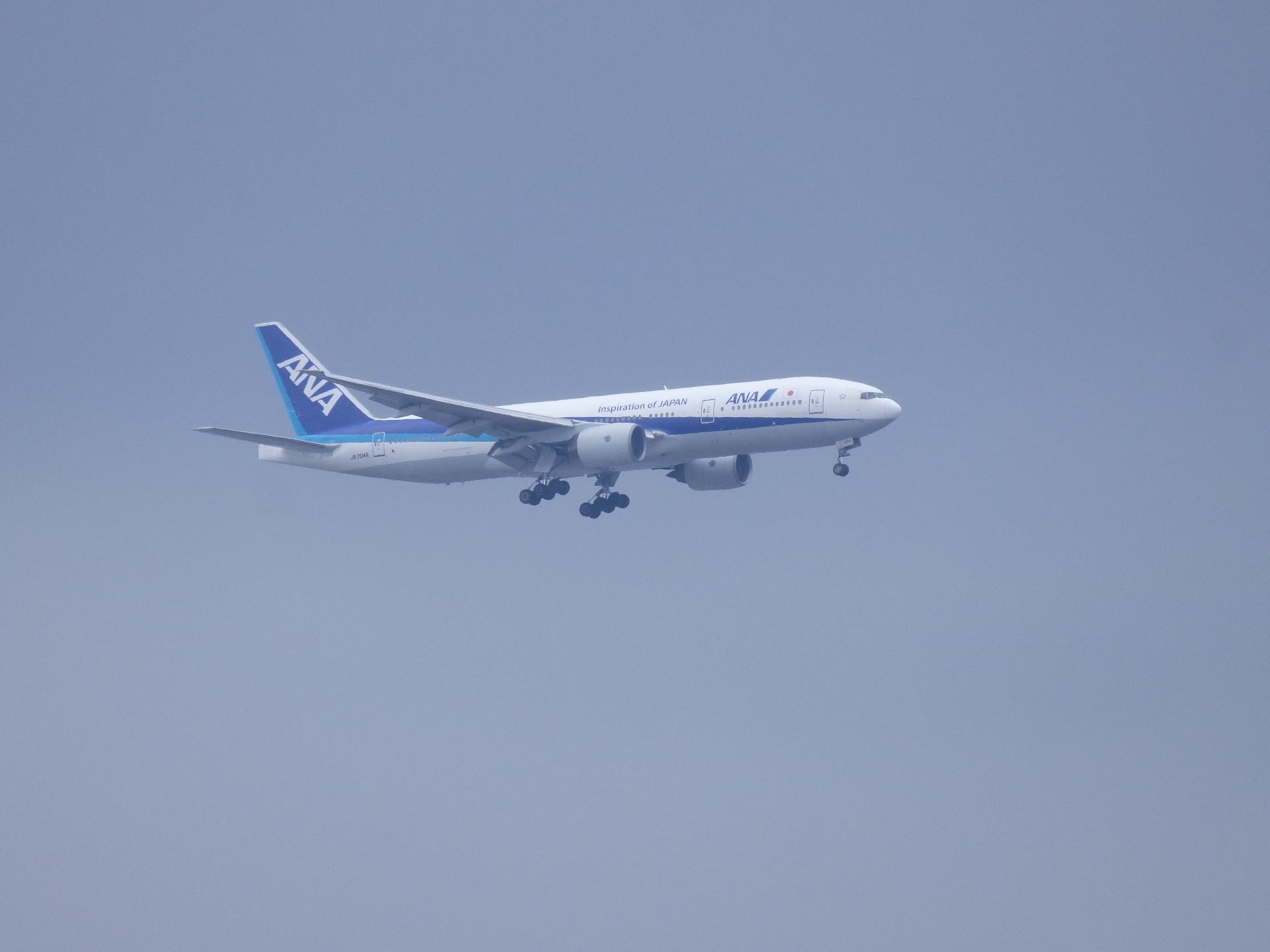 B777-281/JA704A機です。
