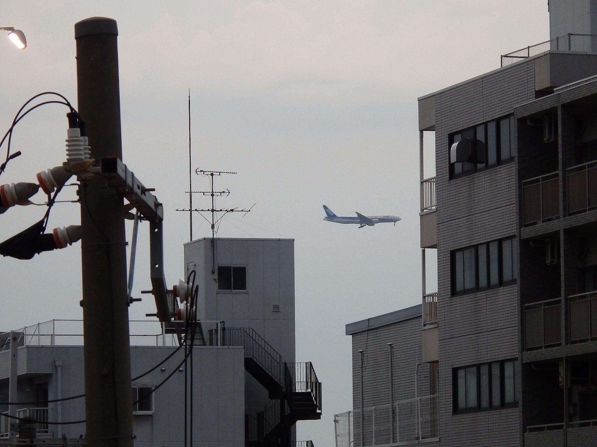 ビルの間を掠め飛ぶANAのトリプルセブンです。