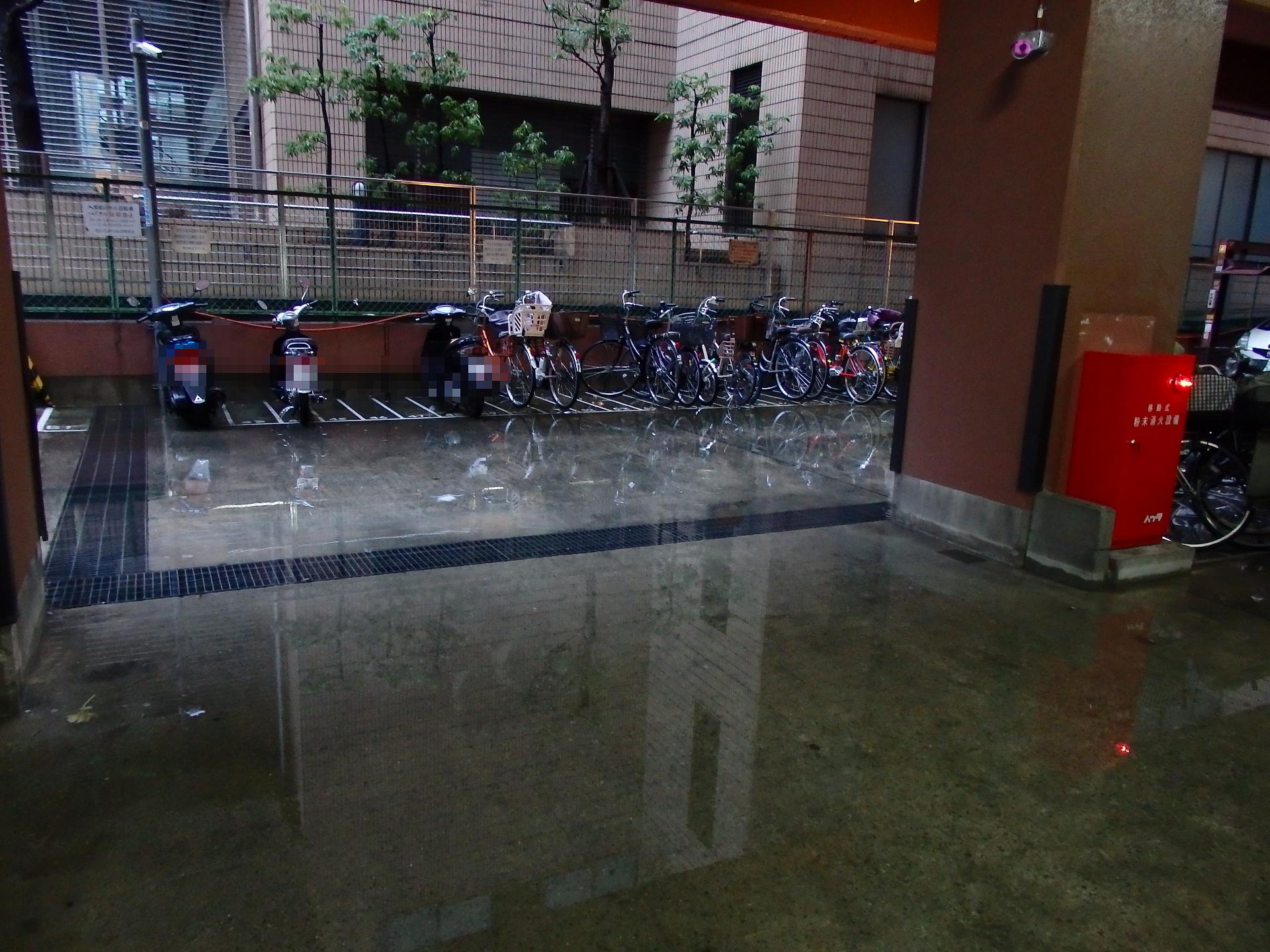 駐車場がまた冠水。