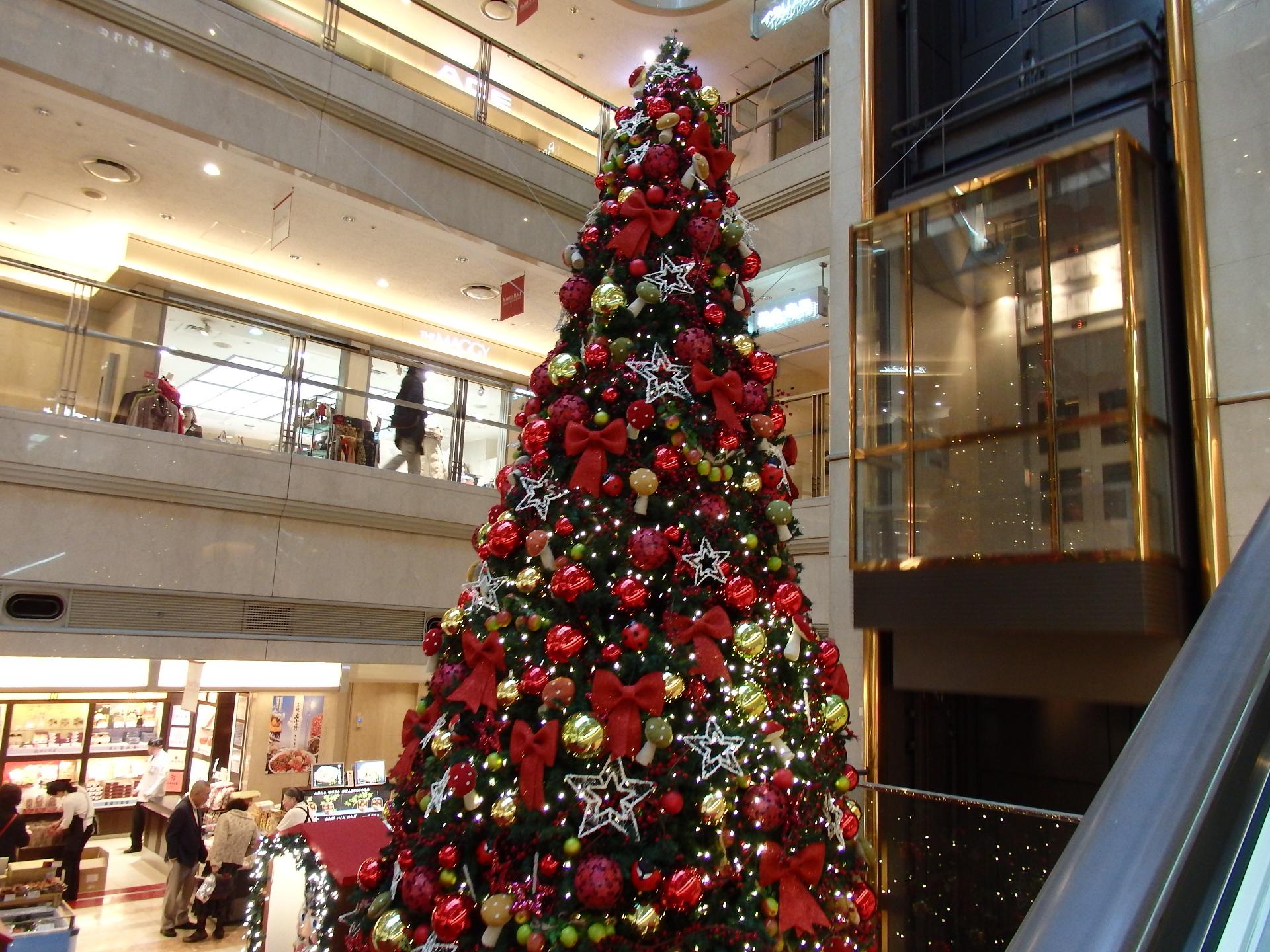 赤いクリスマスツリーです。