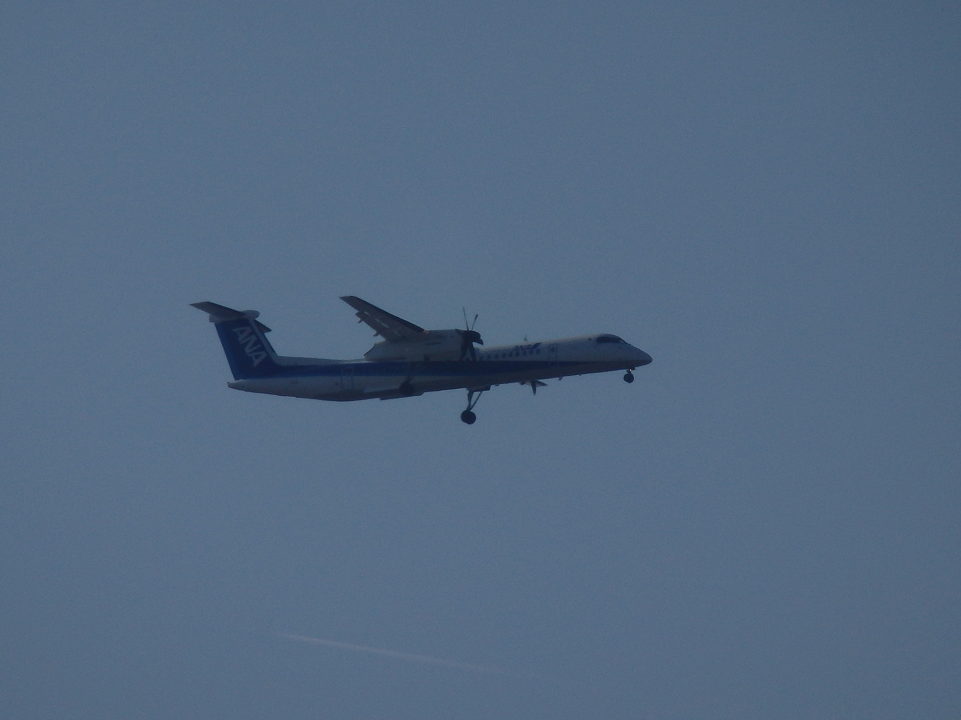 ボンQの背後に飛行機雲。