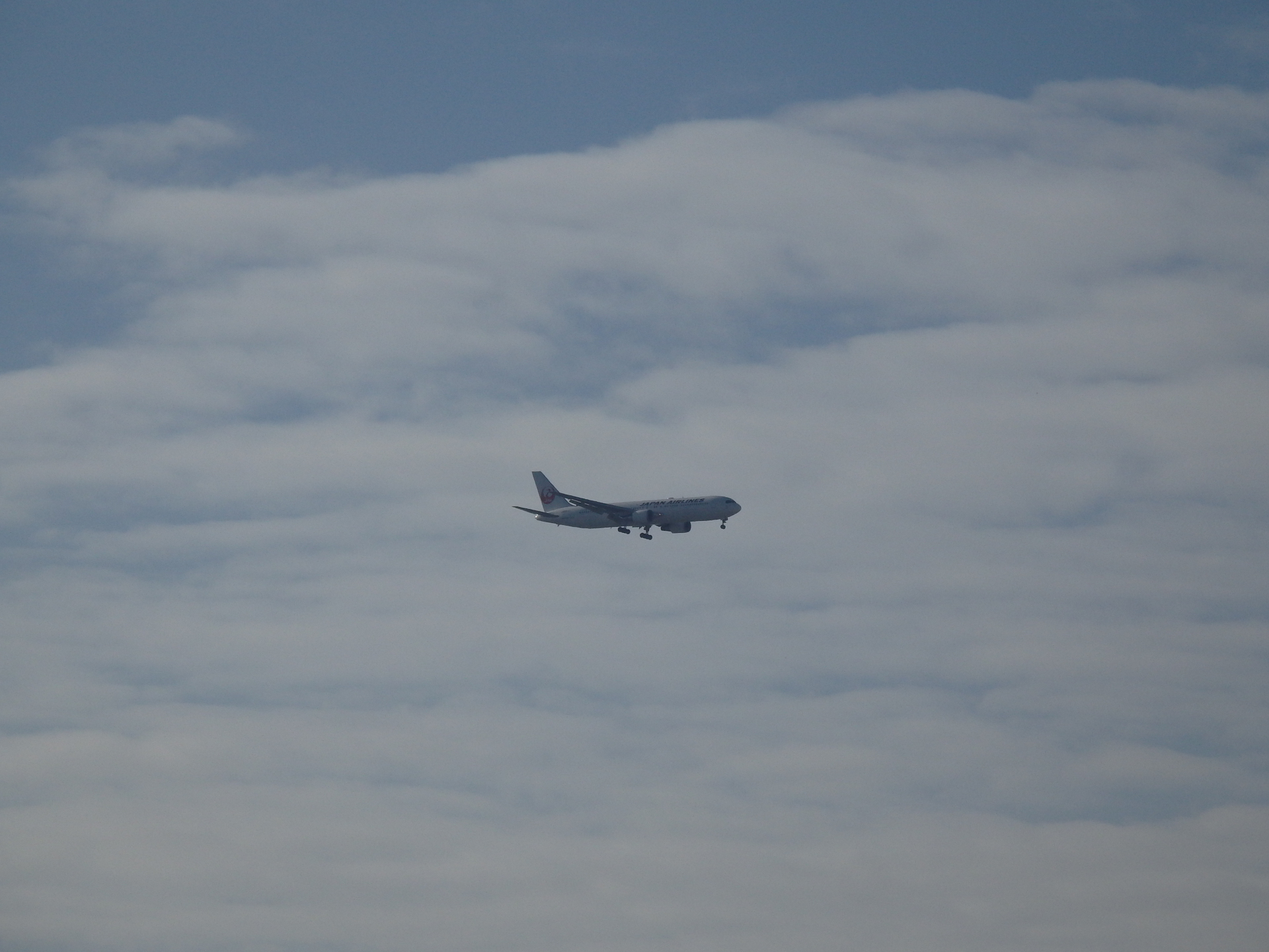 日航のJA657J/B767-346/ERです。