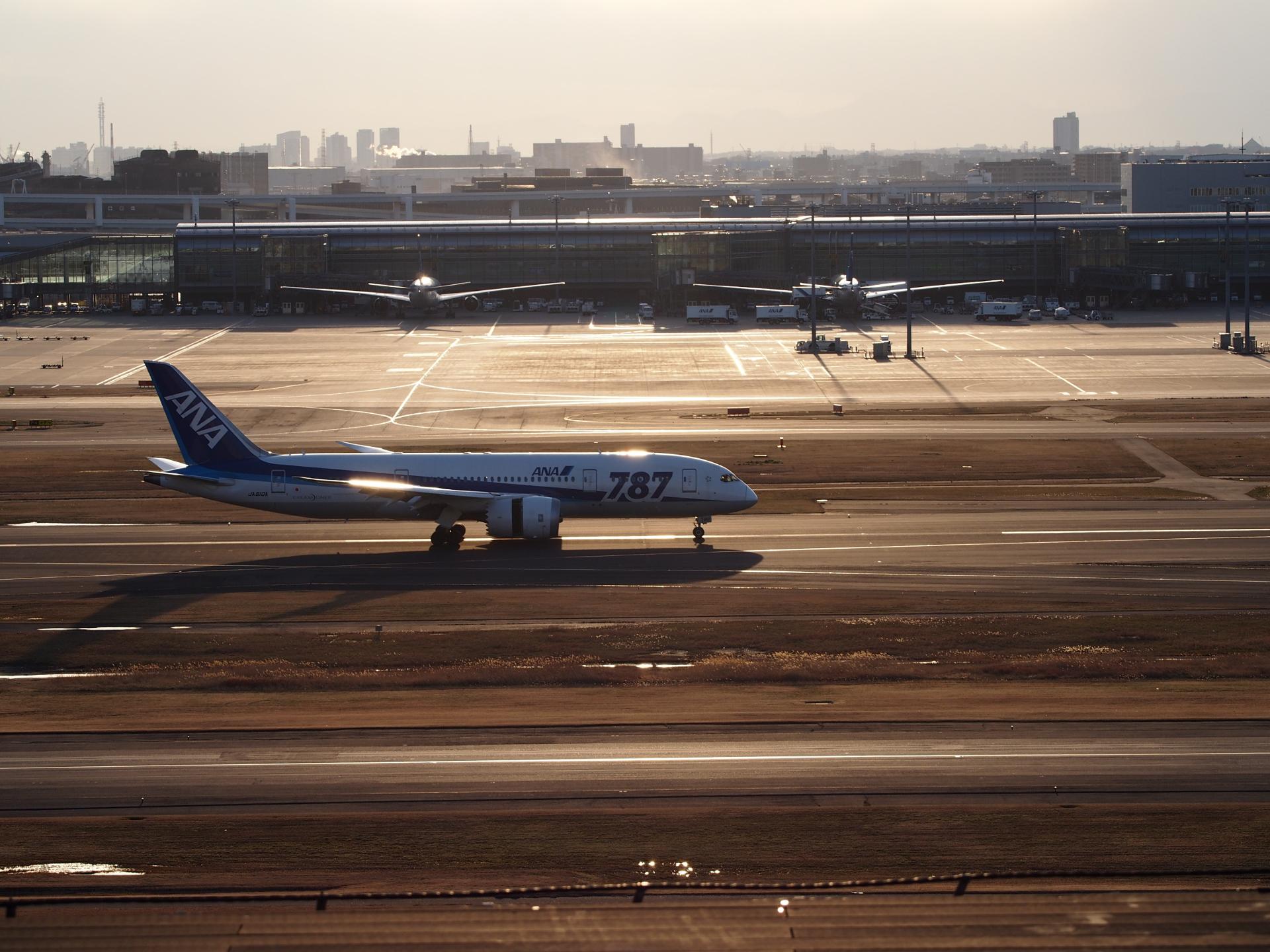 B787-8/JA810A機です。