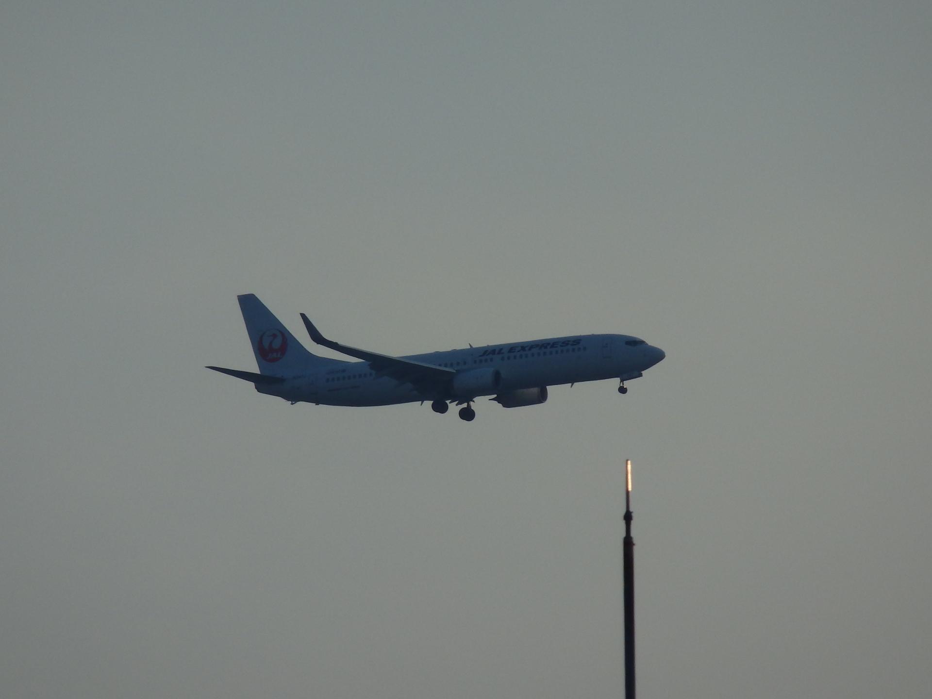 JALのB737−846です。