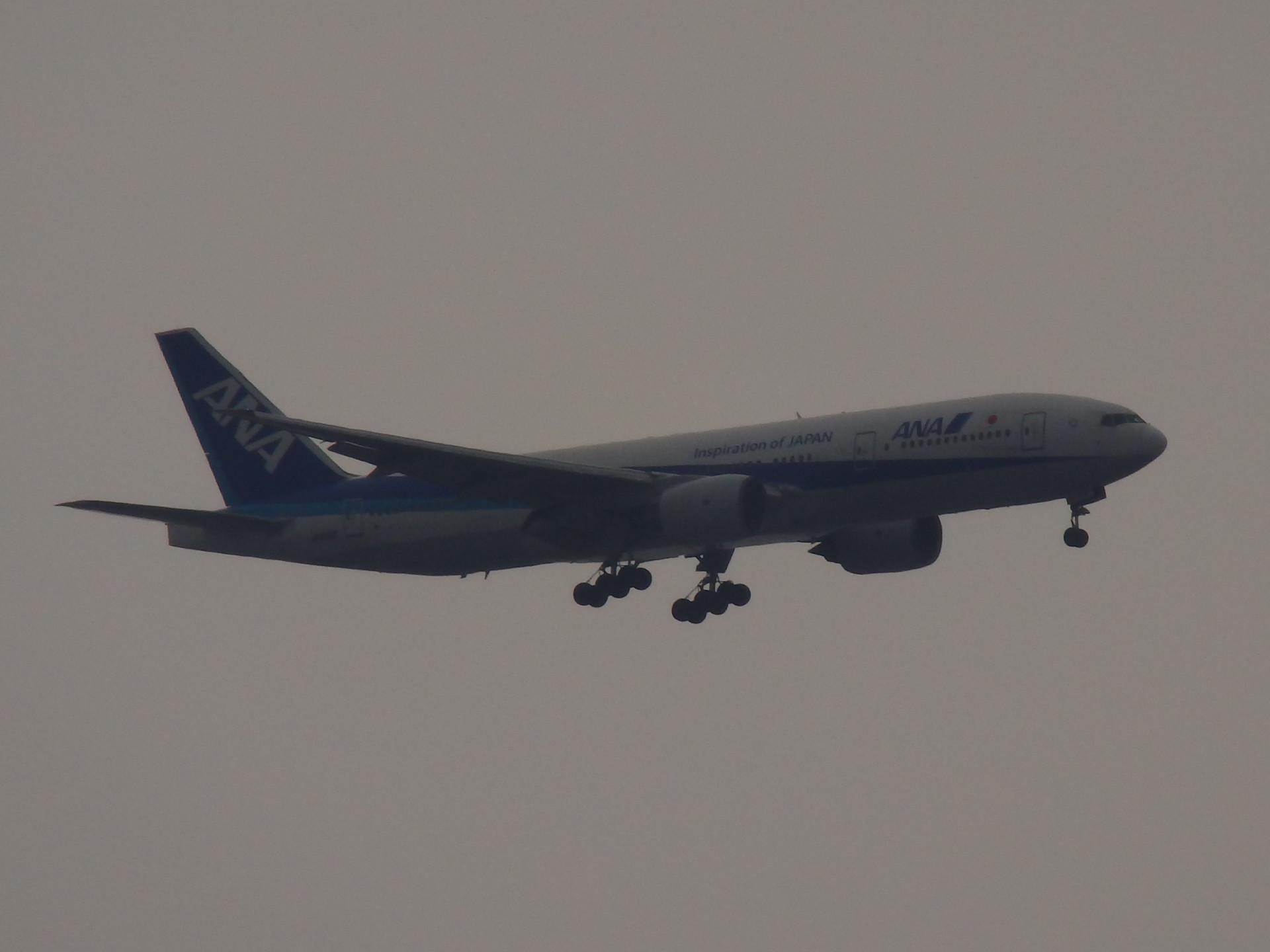 B777-281機です。
