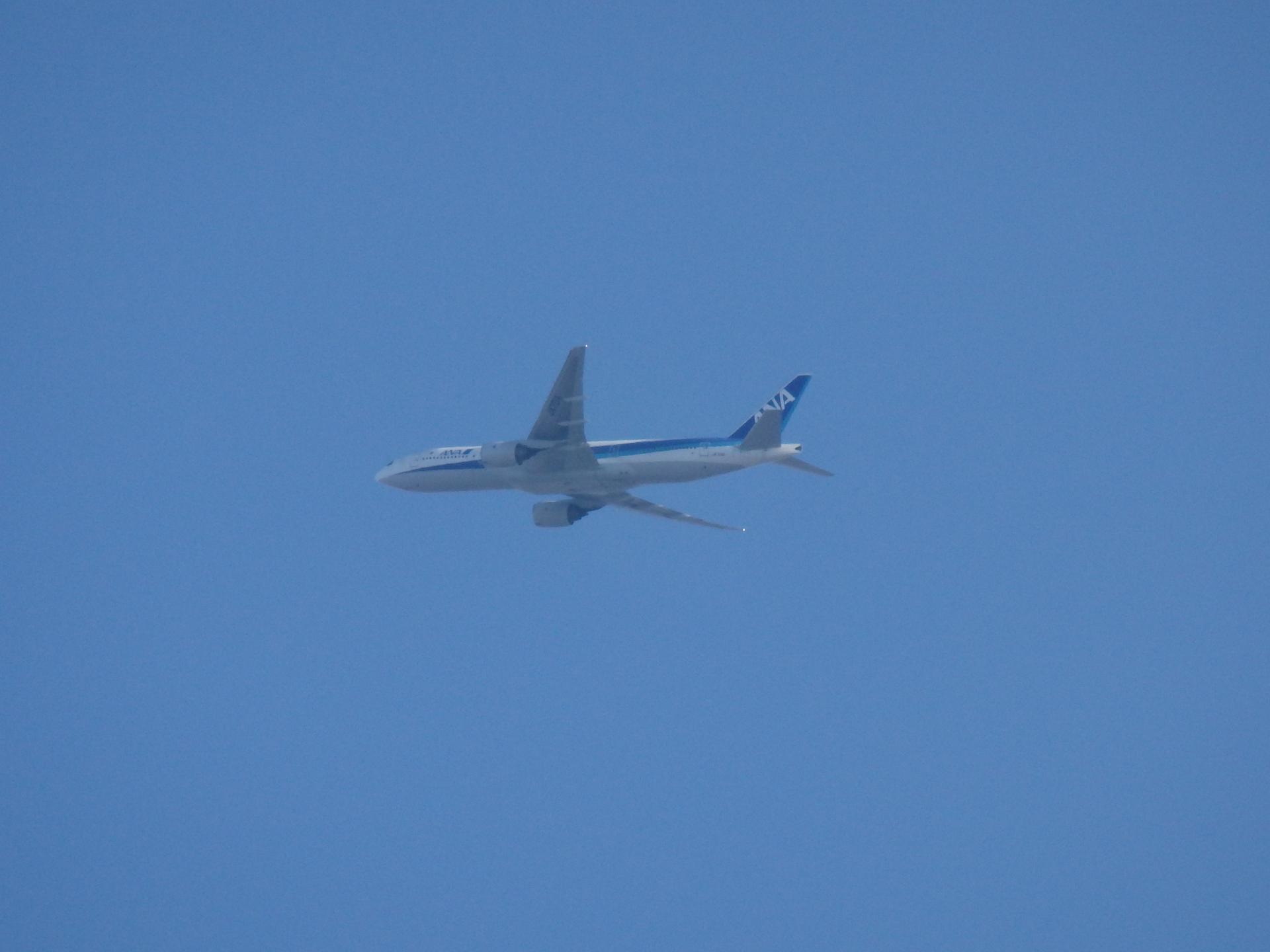 東京便と思われるANAのB777−200です。