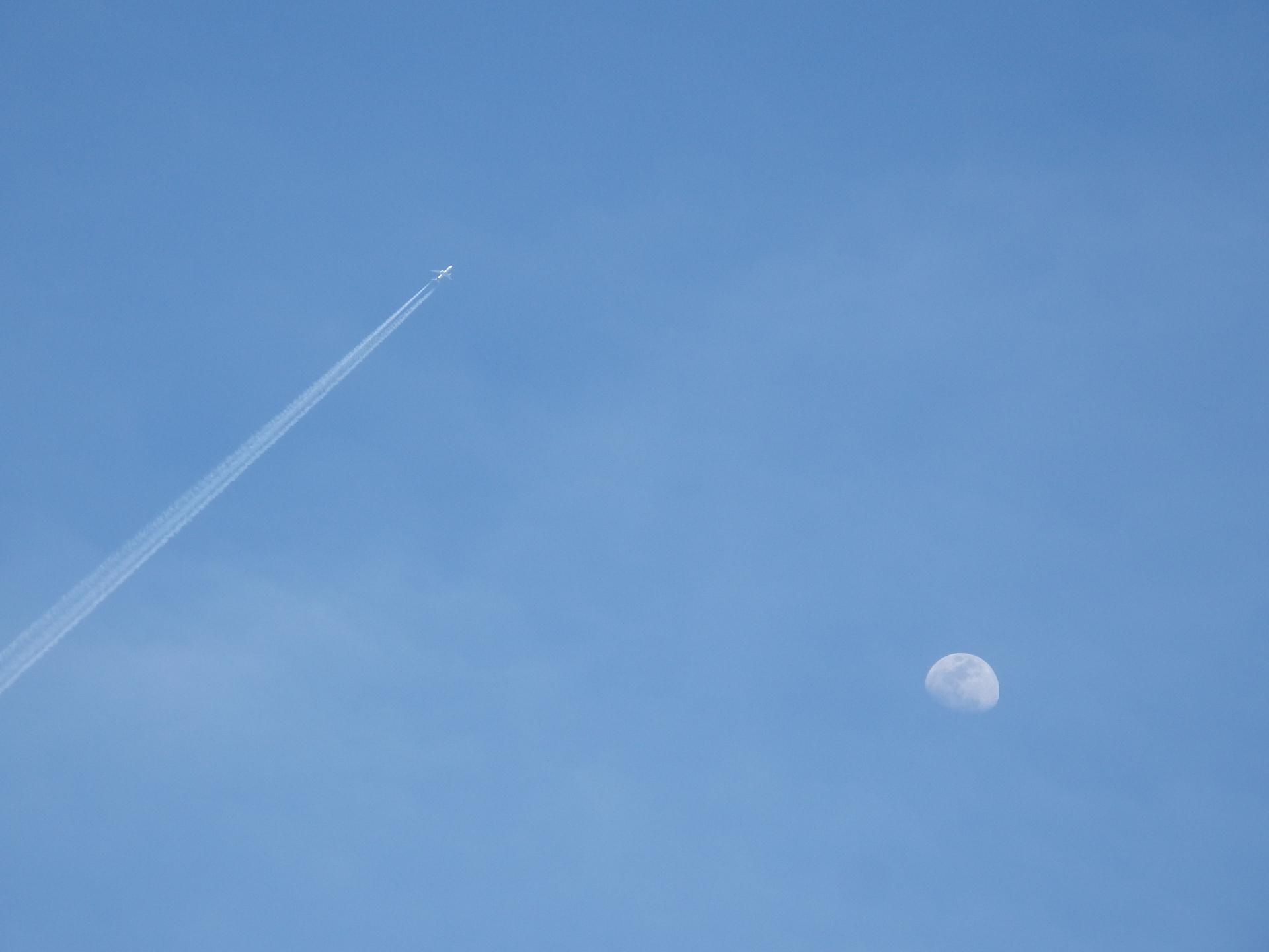 月との2ショットです。