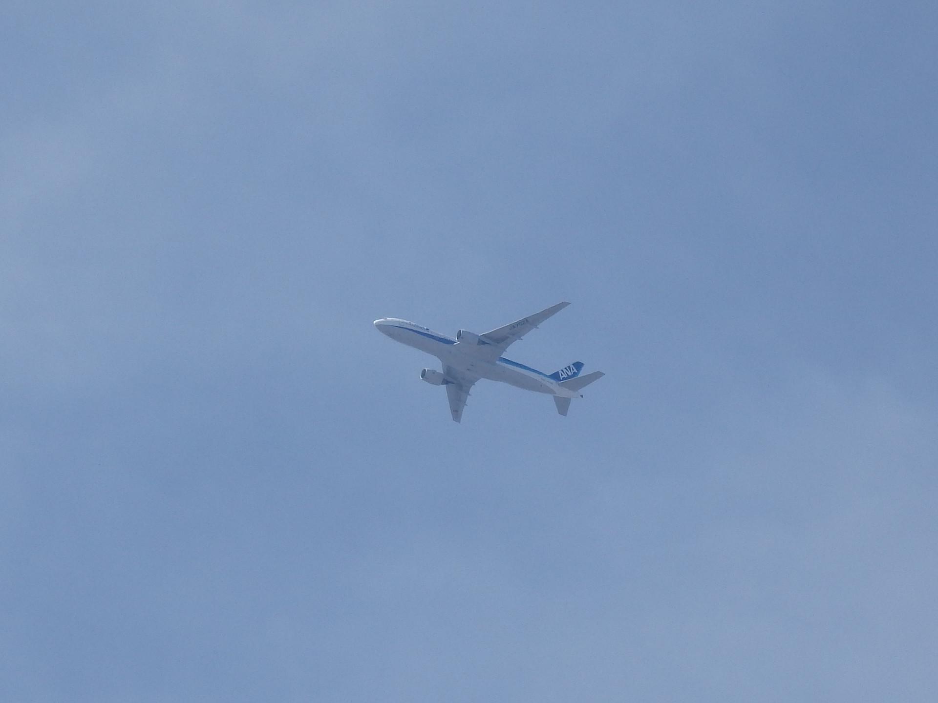 先週東京まで搭乗したJA702A機です。