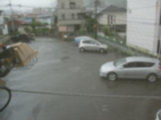 もの凄い雨になりました。